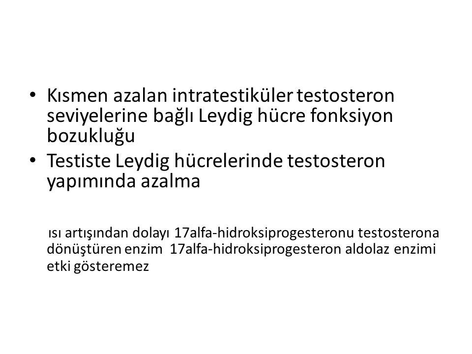 Kısmen azalan intratestiküler testosteron seviyelerine bağlı Leydig hücre fonksiyon bozukluğu