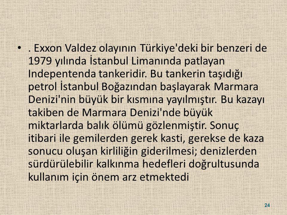 Exxon Valdez olayının Türkiye deki bir benzeri de 1979 yılında İstanbul Limanında patlayan Indepentenda tankeridir.