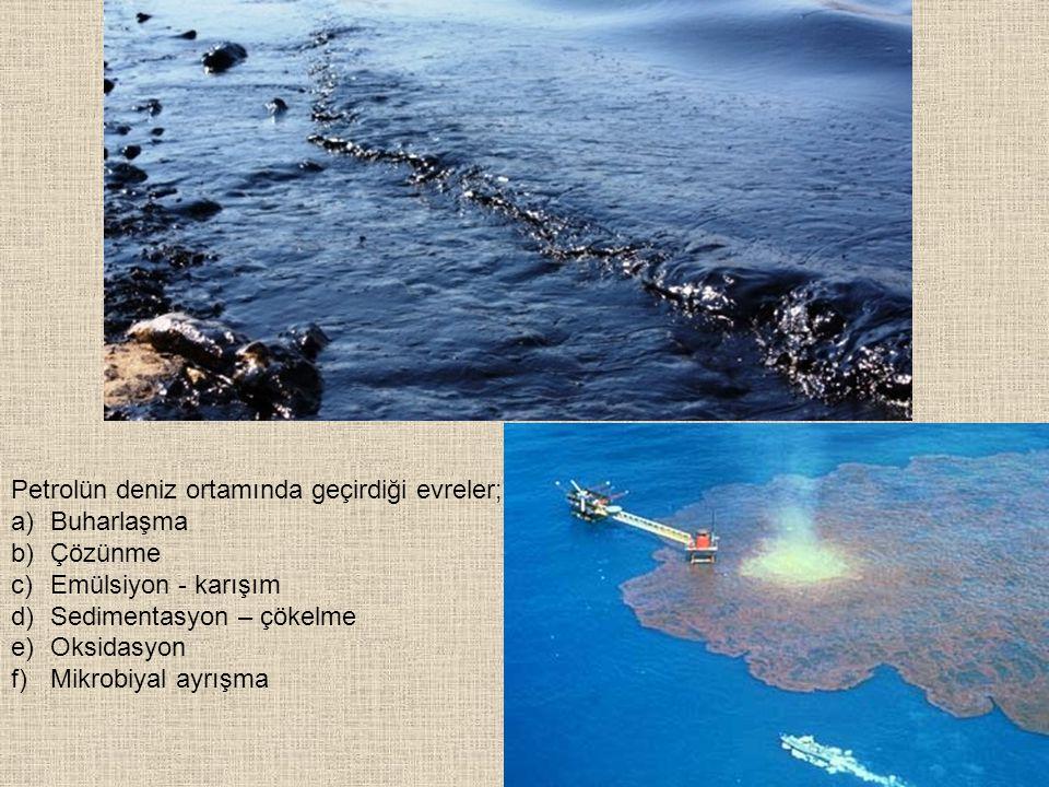 Petrolün deniz ortamında geçirdiği evreler;