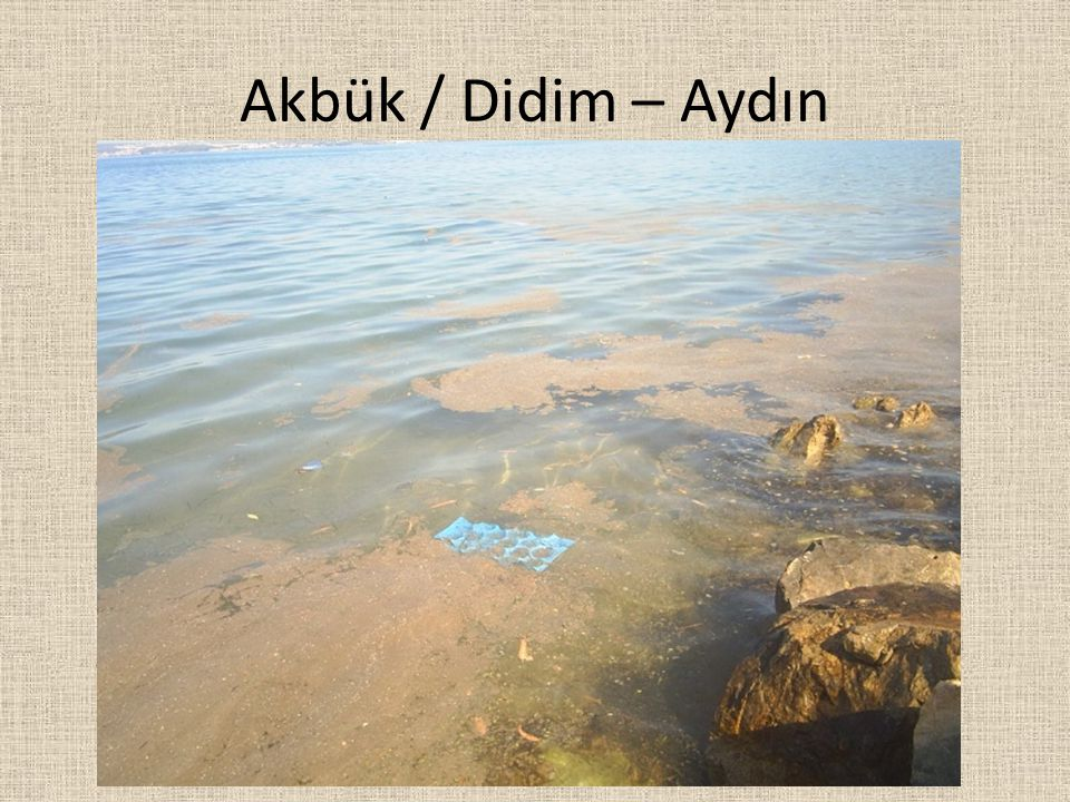 Akbük / Didim – Aydın