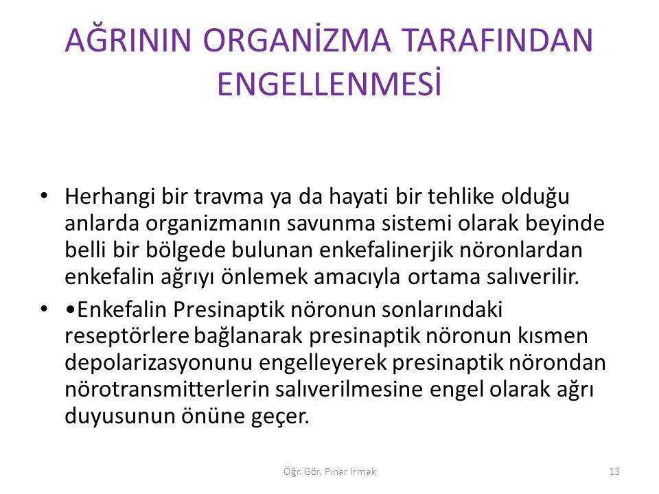 AĞRININ ORGANİZMA TARAFINDAN ENGELLENMESİ