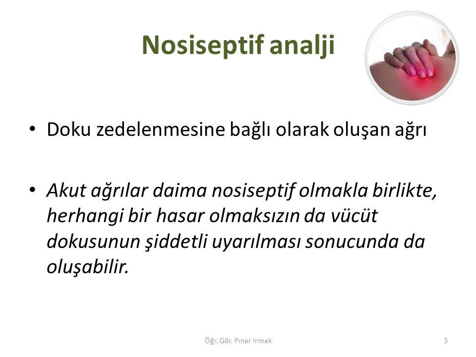 Nosiseptif analji Doku zedelenmesine bağlı olarak oluşan ağrı