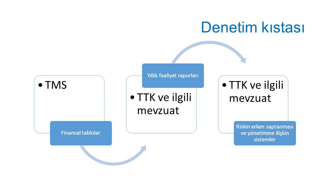 Denetim kıstası TMS TTK ve ilgili mevzuat Yıllık faaliyet raporları