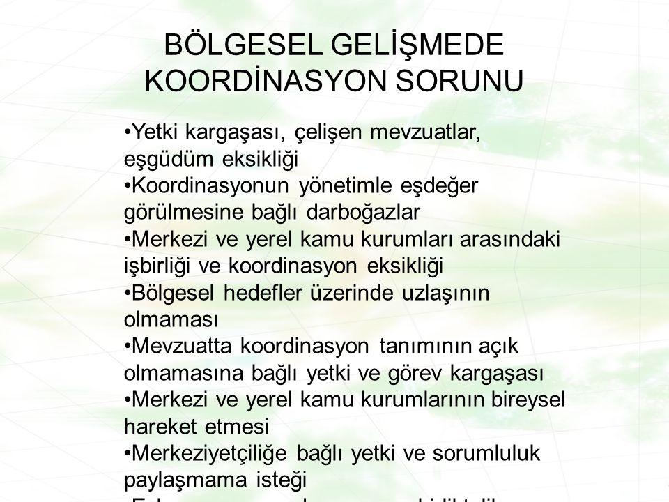 BÖLGESEL GELİŞMEDE KOORDİNASYON SORUNU
