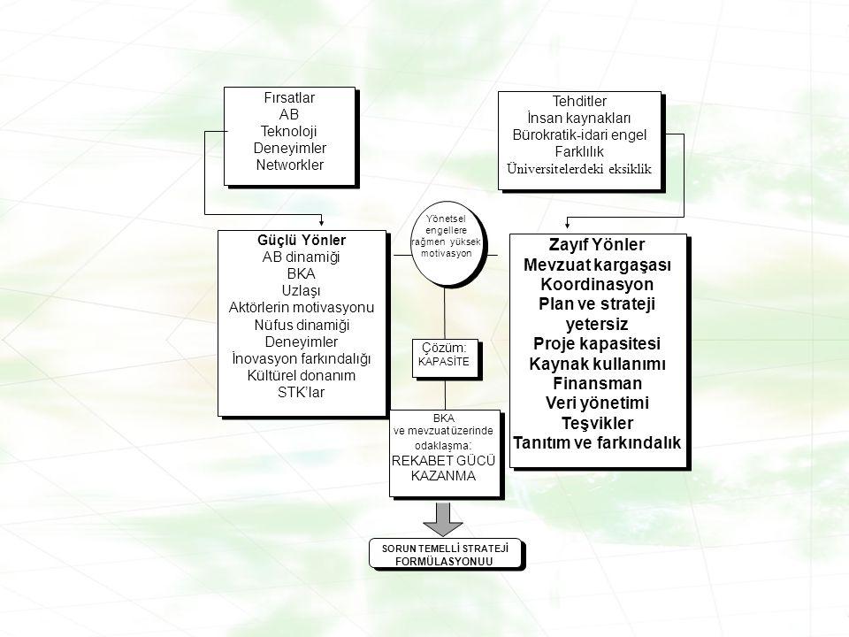 Plan ve strateji yetersiz Proje kapasitesi Kaynak kullanımı Finansman
