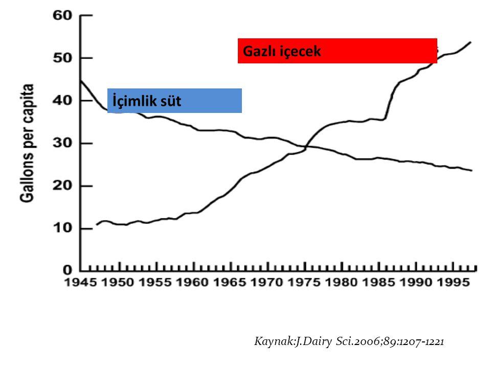 Kaynak: J Dairy Sci.2006;89:1207-1221 Gazlı içecek İçimlik süt