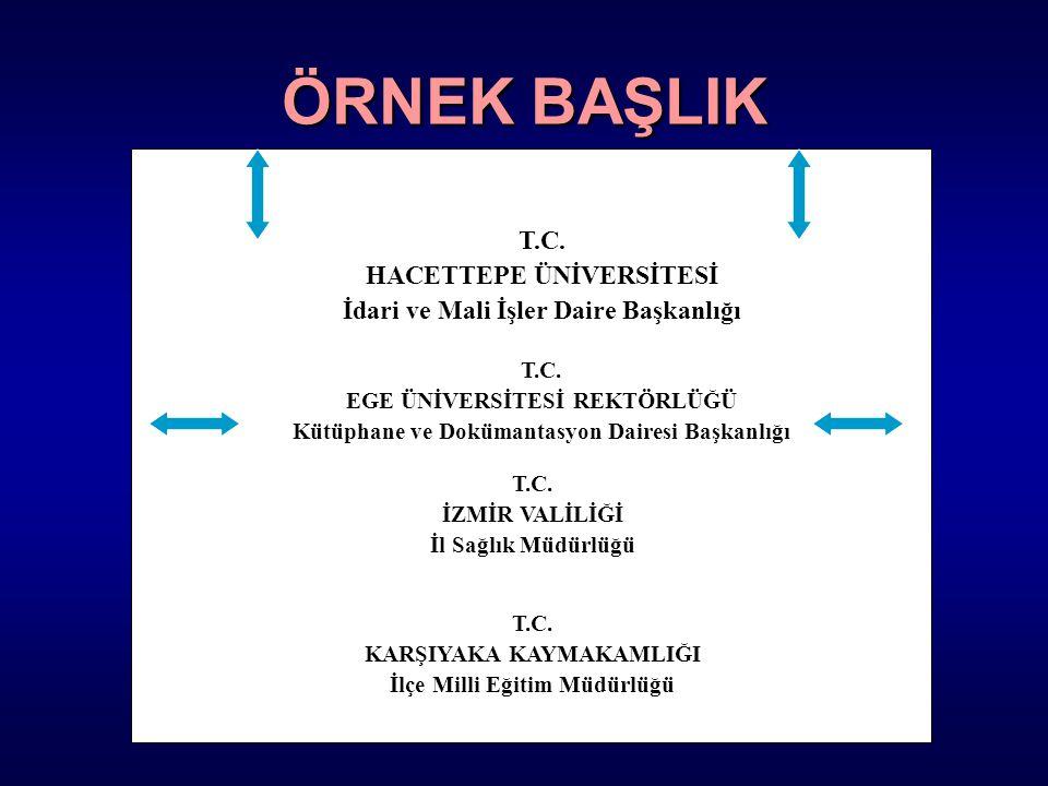 ÖRNEK BAŞLIK T.C. HACETTEPE ÜNİVERSİTESİ