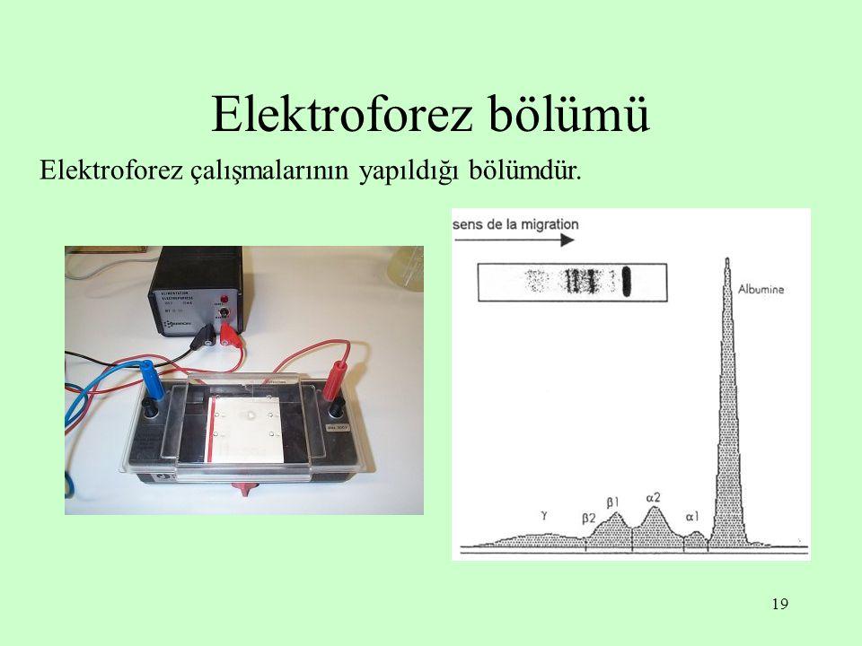 Elektroforez bölümü Elektroforez çalışmalarının yapıldığı bölümdür.