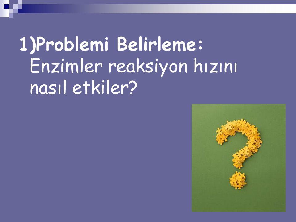 1)Problemi Belirleme: Enzimler reaksiyon hızını nasıl etkiler