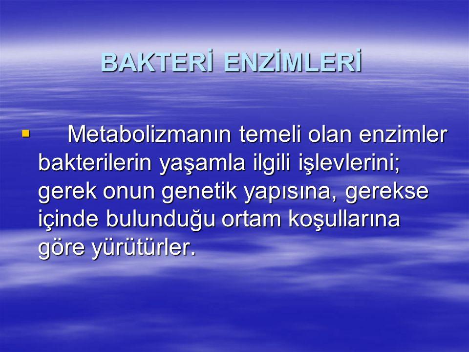 BAKTERİ ENZİMLERİ
