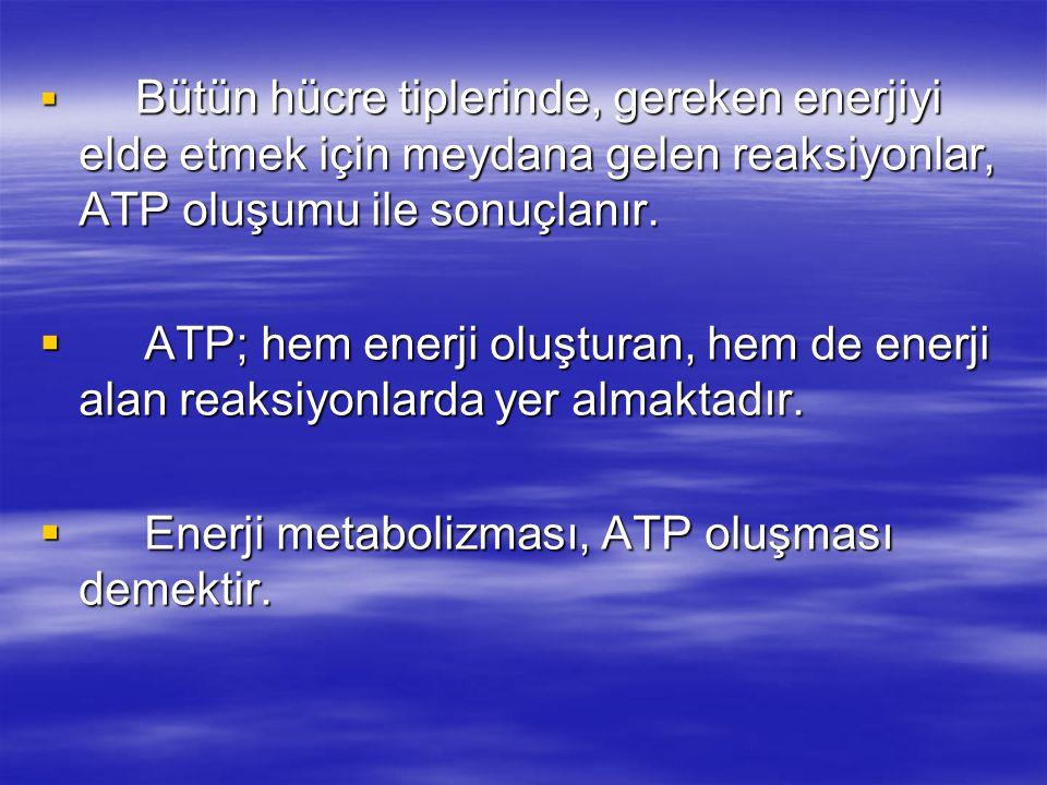Enerji metabolizması, ATP oluşması demektir.