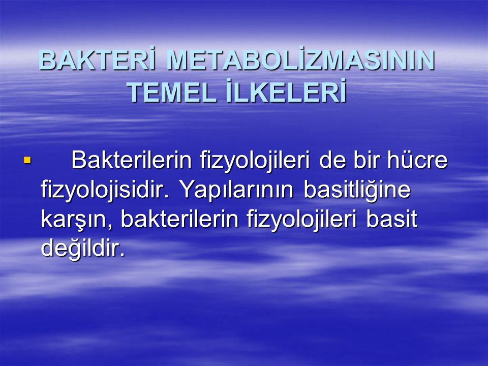 BAKTERİ METABOLİZMASININ TEMEL İLKELERİ
