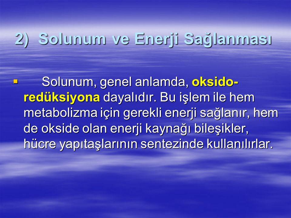2) Solunum ve Enerji Sağlanması