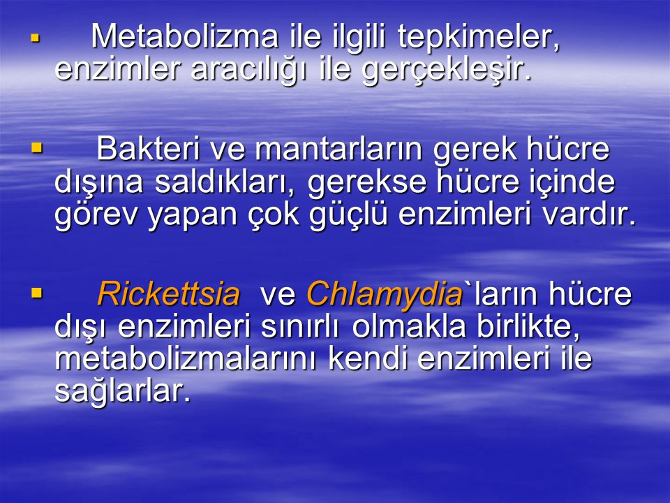 Metabolizma ile ilgili tepkimeler, enzimler aracılığı ile gerçekleşir.