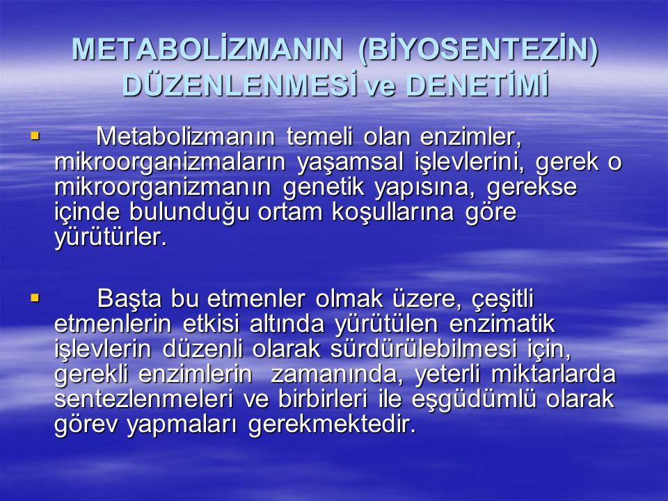 METABOLİZMANIN (BİYOSENTEZİN) DÜZENLENMESİ ve DENETİMİ