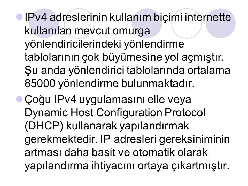 IPv4 adreslerinin kullanım biçimi internette kullanılan mevcut omurga yönlendiricilerindeki yönlendirme tablolarının çok büyümesine yol açmıştır. Şu anda yönlendirici tablolarında ortalama 85000 yönlendirme bulunmaktadır.