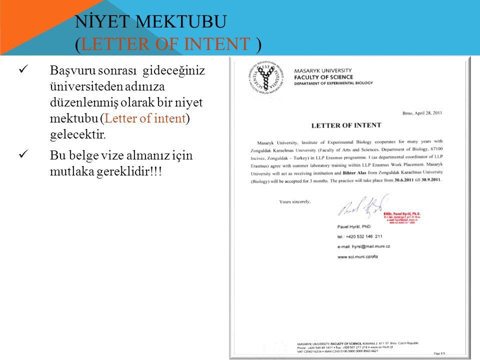 NİYET MEKTUBU (LETTER OF INTENT )