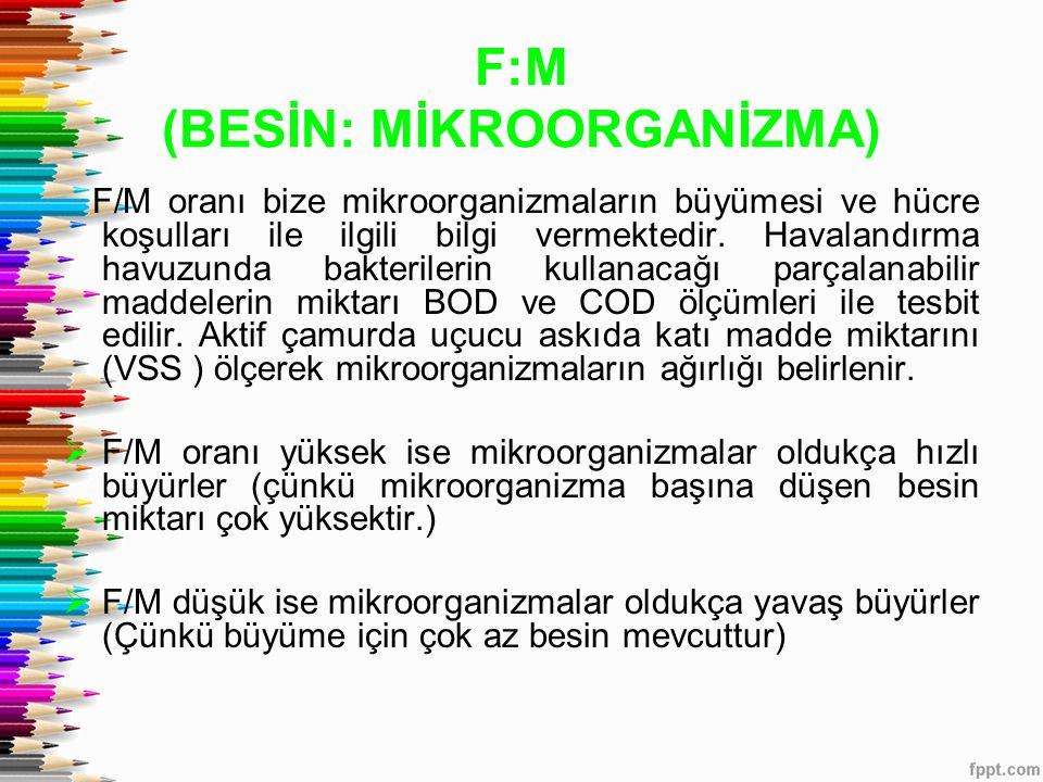 F:M (BESİN: MİKROORGANİZMA)