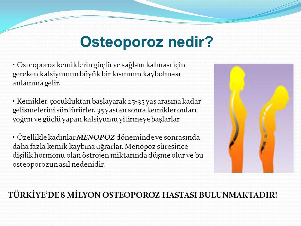 Osteoporoz nedir Osteoporoz kemiklerin güçlü ve sağlam kalması için gereken kalsiyumun büyük bir kısmının kaybolması anlamına gelir.
