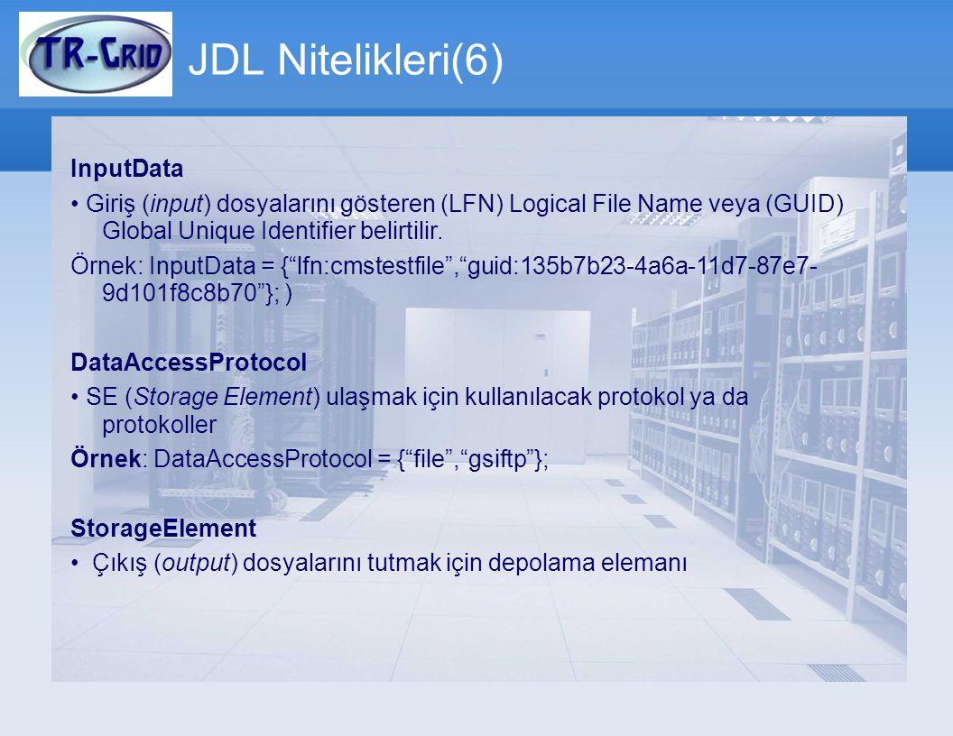 JDL Nitelikleri(6) InputData