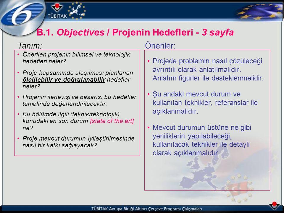 B.1. Objectives / Projenin Hedefleri - 3 sayfa