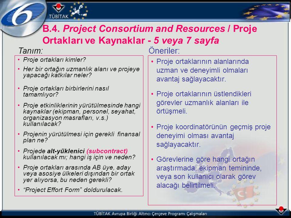B.4. Project Consortium and Resources / Proje Ortakları ve Kaynaklar - 5 veya 7 sayfa