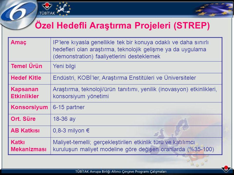 Özel Hedefli Araştırma Projeleri (STREP)