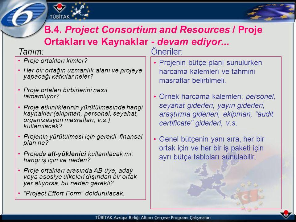 B.4. Project Consortium and Resources / Proje Ortakları ve Kaynaklar - devam ediyor...