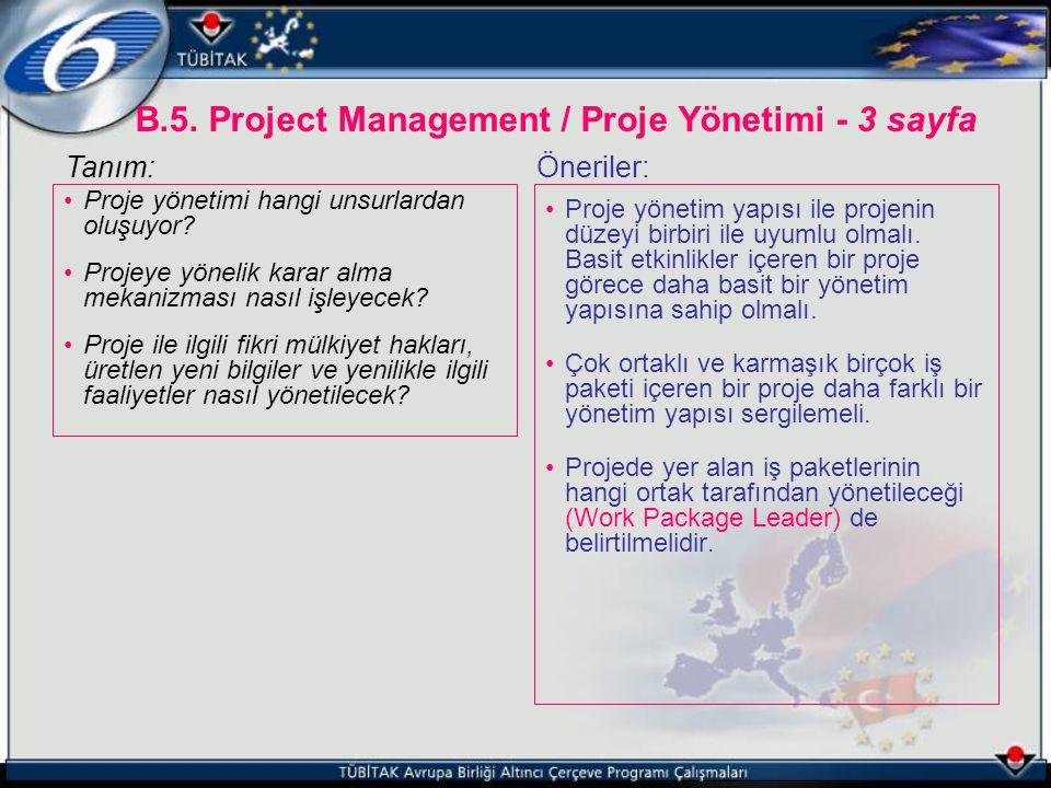 B.5. Project Management / Proje Yönetimi - 3 sayfa