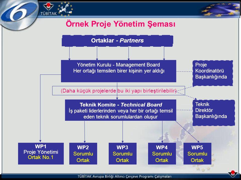 Örnek Proje Yönetim Şeması