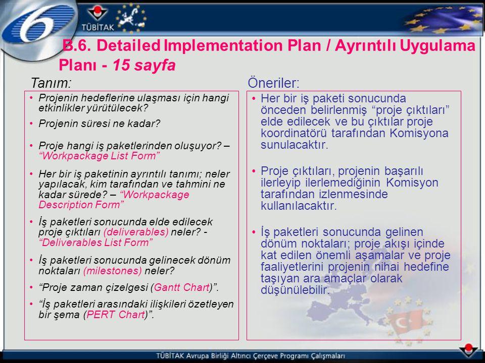 B.6. Detailed Implementation Plan / Ayrıntılı Uygulama Planı - 15 sayfa