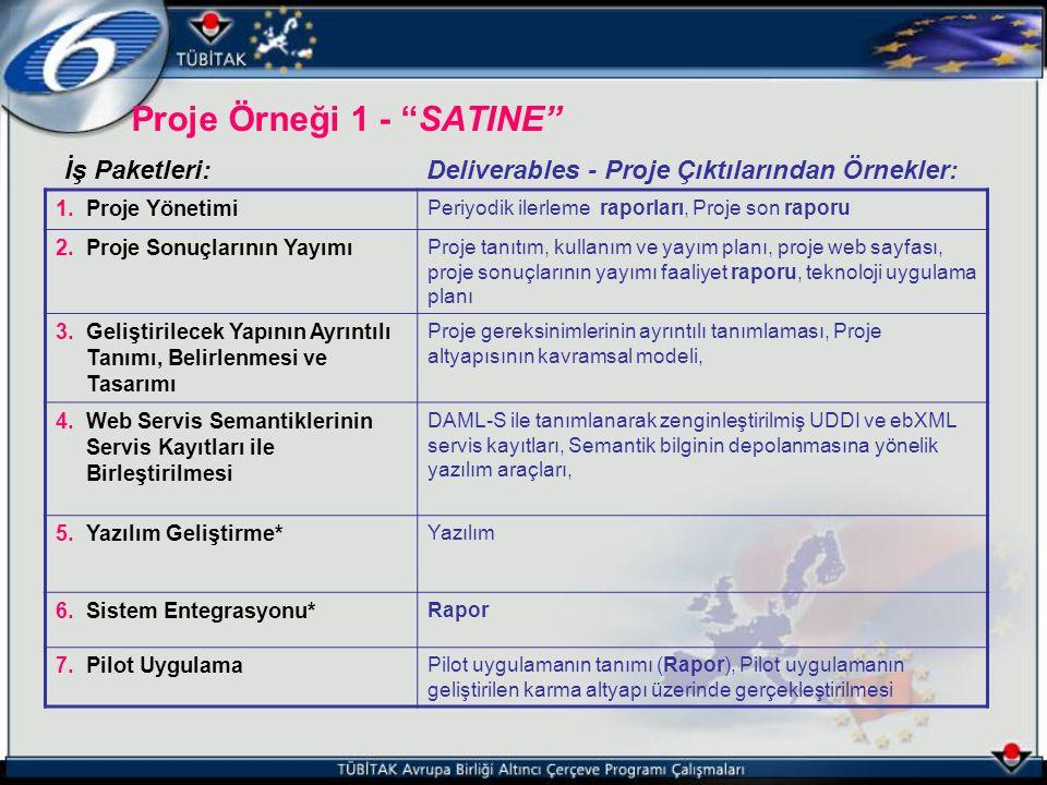 Proje Örneği 1 - SATINE