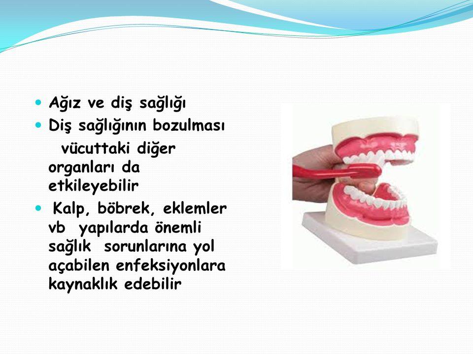 Ağız ve diş sağlığı Diş sağlığının bozulması. vücuttaki diğer organları da etkileyebilir.