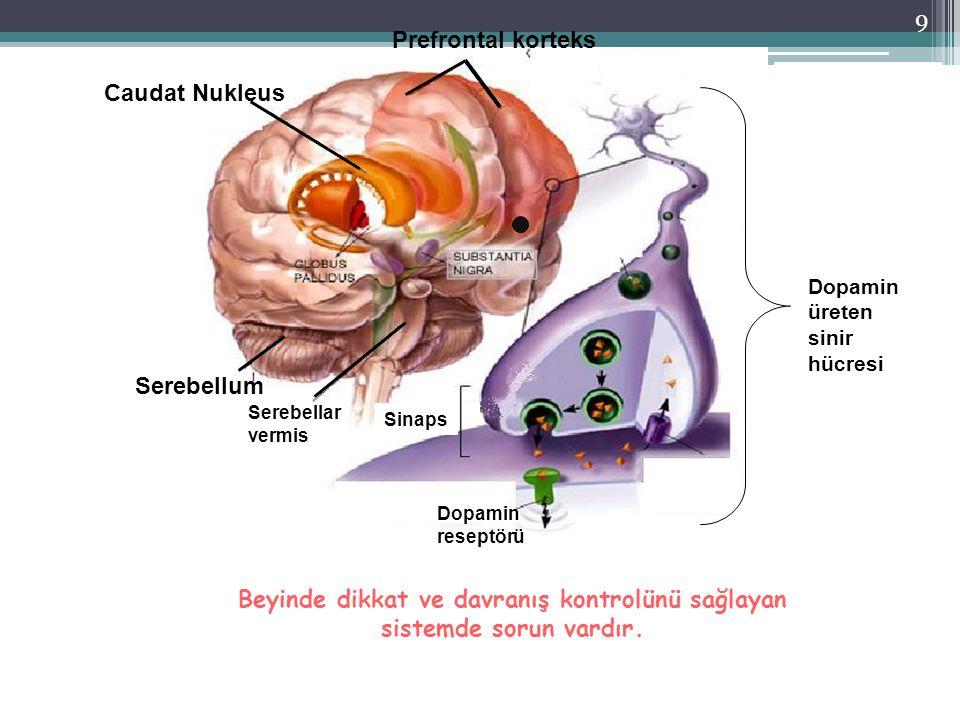 Beyinde dikkat ve davranış kontrolünü sağlayan sistemde sorun vardır.