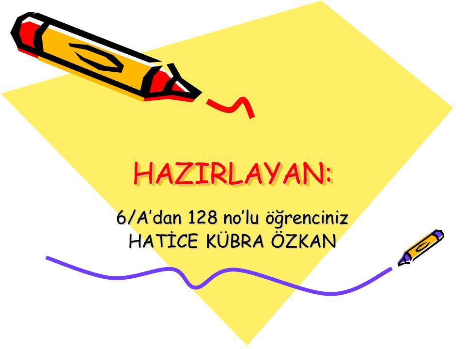 6/A'dan 128 no'lu öğrenciniz HATİCE KÜBRA ÖZKAN