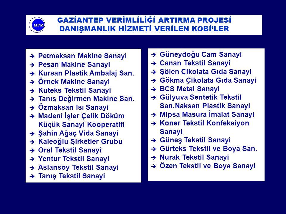 GAZİANTEP VERİMLİLİĞİ ARTIRMA PROJESİ DANIŞMANLIK HİZMETİ VERİLEN KOBİ'LER