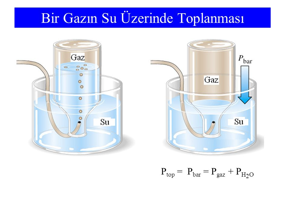 Bir Gazın Su Üzerinde Toplanması