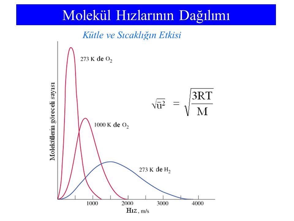 Molekül Hızlarının Dağılımı