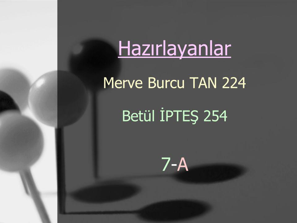 Hazırlayanlar Merve Burcu TAN 224 Betül İPTEŞ 254 7-A