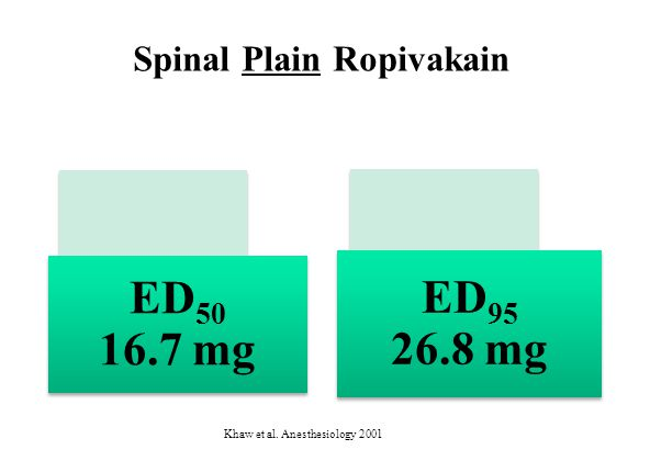 Spinal Plain Ropivakain