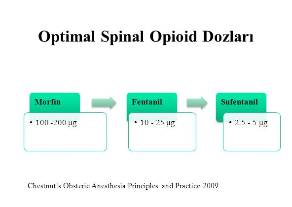 Optimal Spinal Opioid Dozları