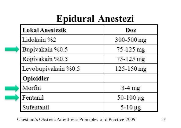 Epidural Anestezi Lokal Anestezik Doz Lidokain %2 300-500 mg