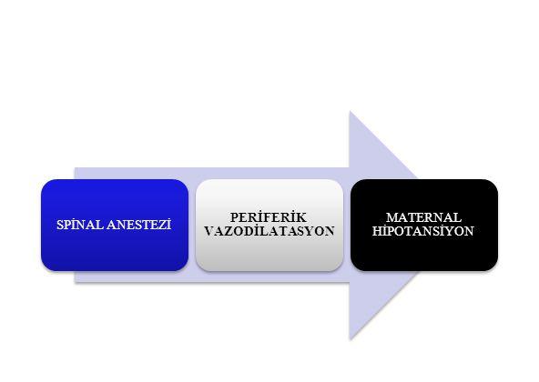 PERİFERİK VAZODİLATASYON