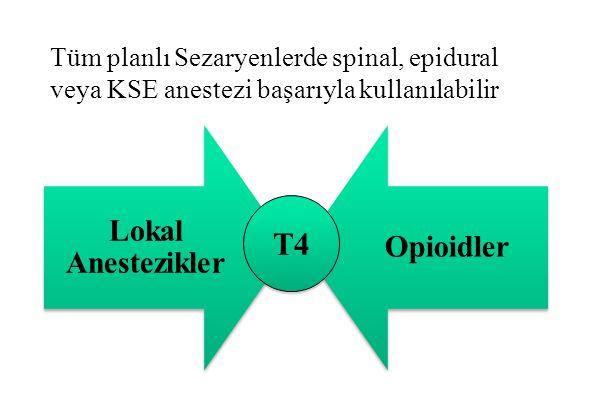 T4 Lokal Anestezikler Opioidler