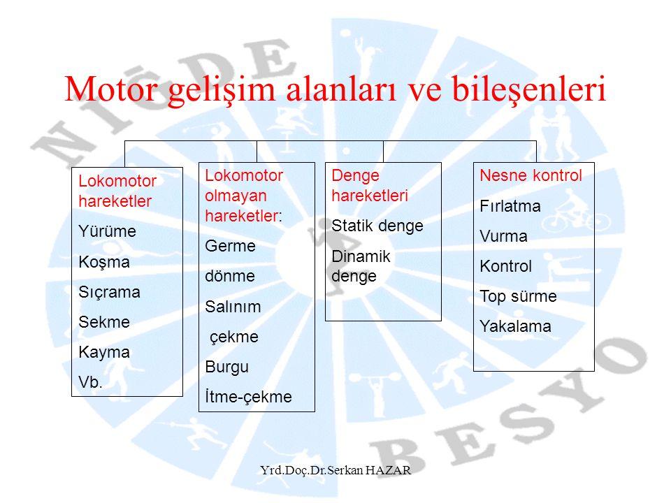Motor gelişim alanları ve bileşenleri