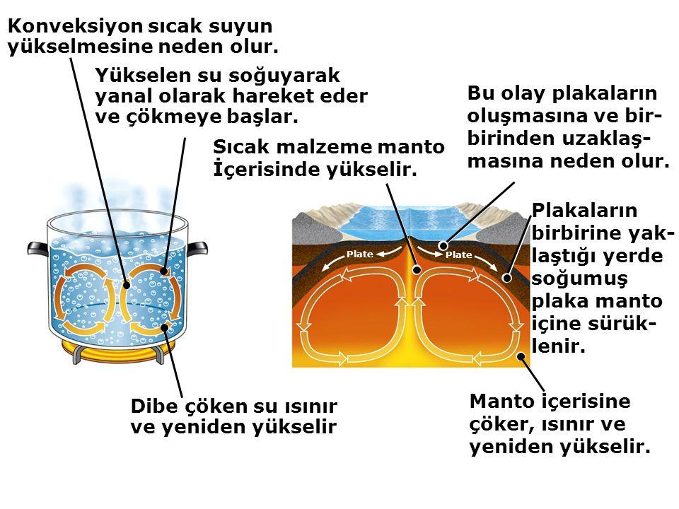 Konveksiyon sıcak suyun yükselmesine neden olur.