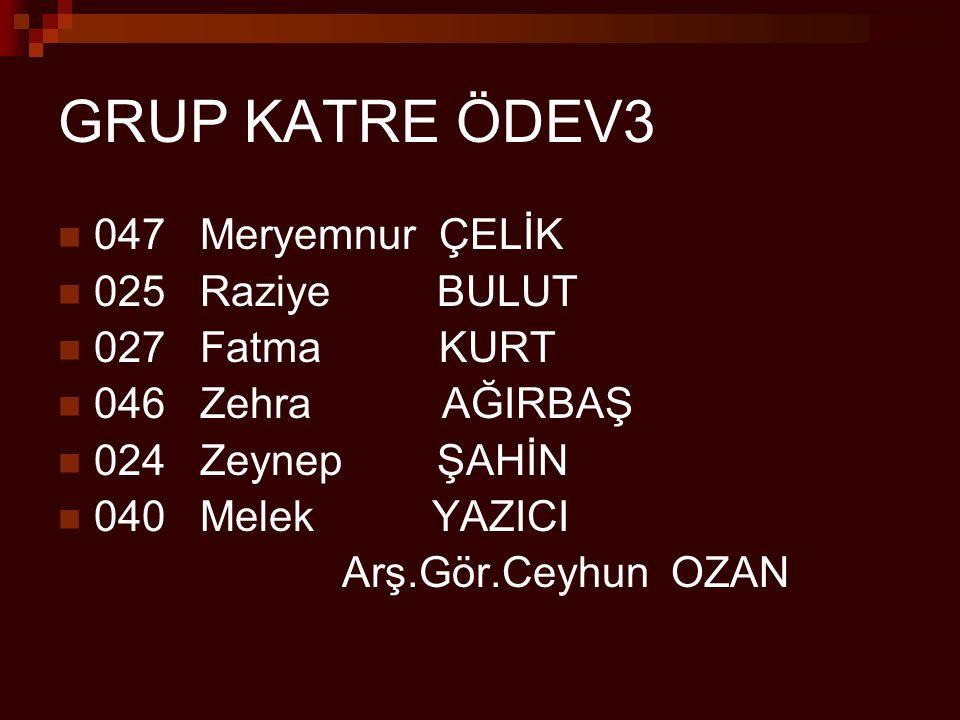 GRUP KATRE ÖDEV3 047 Meryemnur ÇELİK 025 Raziye BULUT 027 Fatma KURT