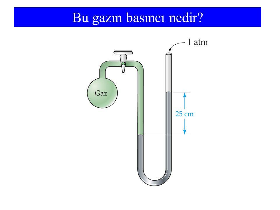 Bu gazın basıncı nedir 1 atm
