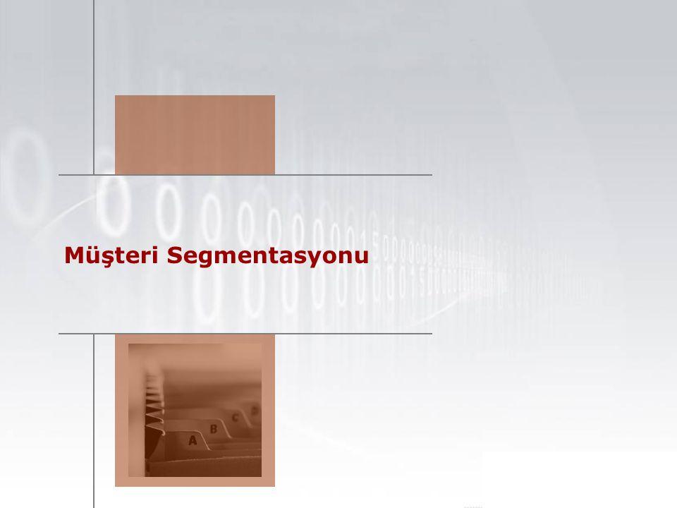 Mevcut Müşteri Segmentasyonu