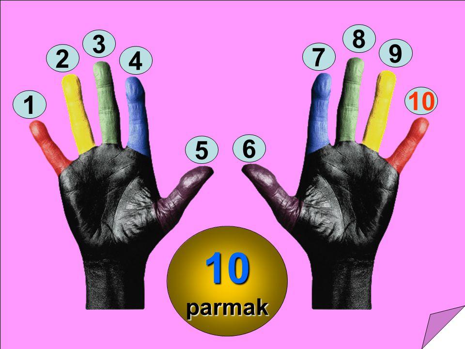 8 3 9 2 7 4 10 1 5 6 10 parmak